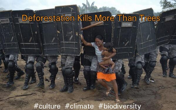 deforestation and indigenous tribes in Amazon
