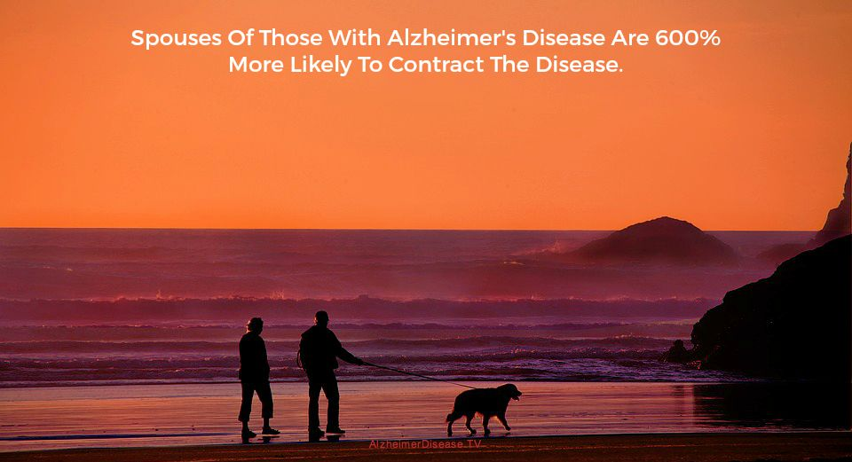 Alzheimer's disease and contagion
