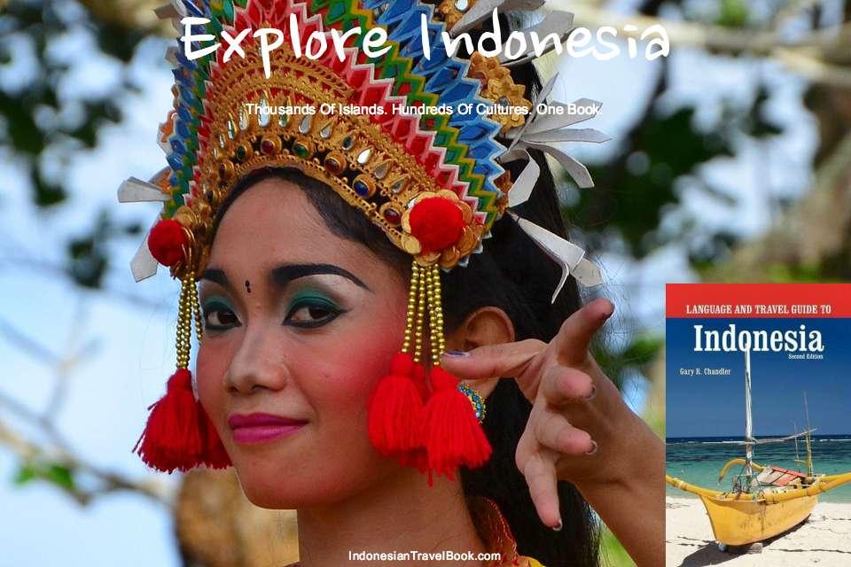 Indonesia consultant